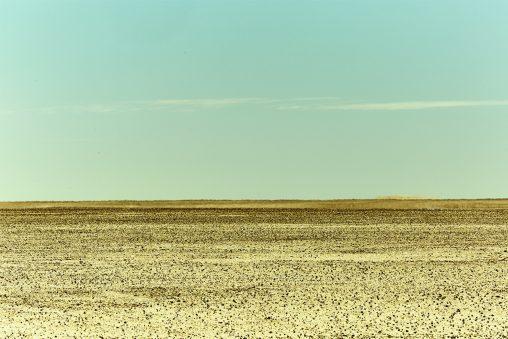 Namibia plain web 7